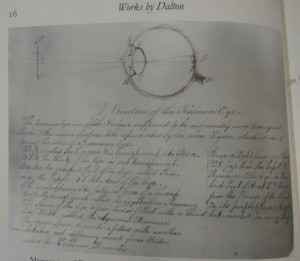 An image taken from AL Smythe's book. One of the manuscripts I viewed, 'Structure of the Human Eye'